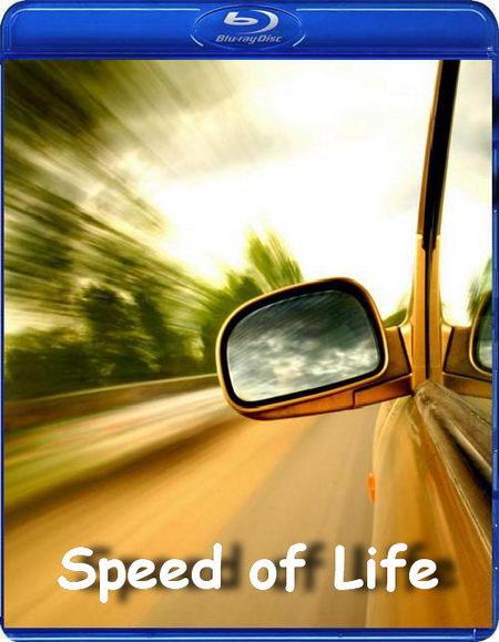 Скачать Скорость жизни